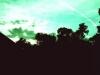landscapes23